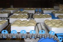 Разрыхлители системы пищевой промышленности (5)