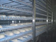Equipement levant produits de boulangerie (6)