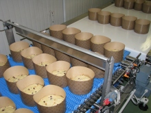 Plantas Levadura industria alimentaria (7)