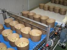 Plantas pão levedado (8)