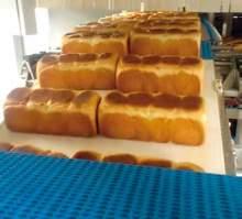 Transportadores dulces (5)