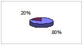 80% settore edile