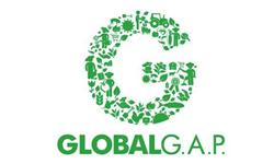 Globalg2